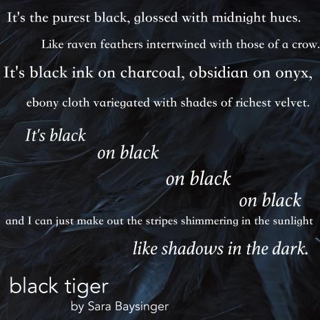 black-on-black